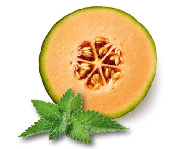 fruit4hair-detail-melon-mint